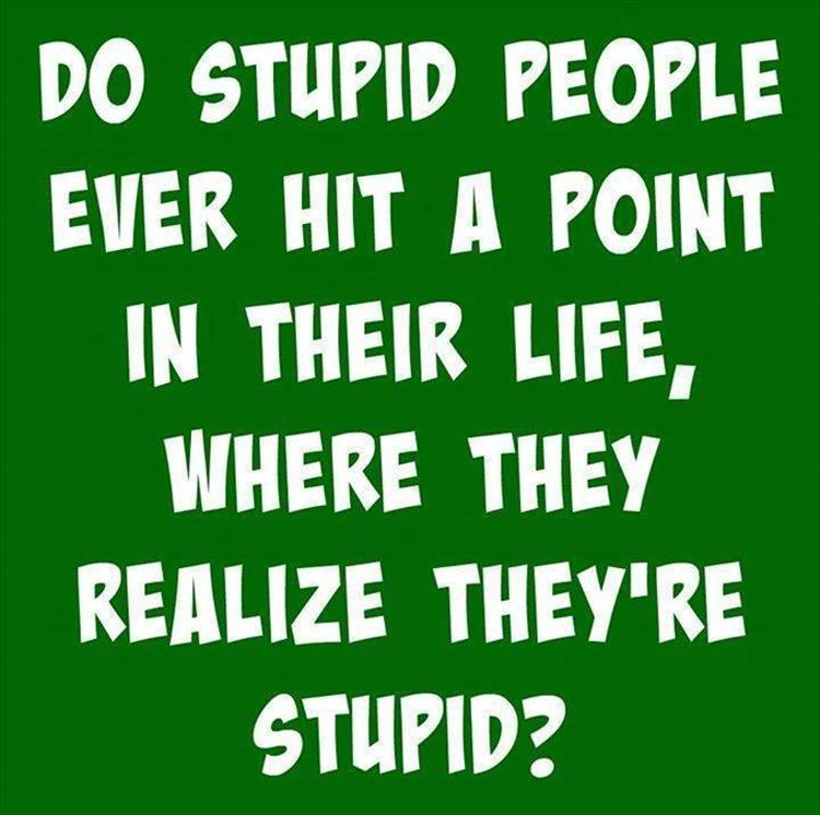 A thought about stupid people.