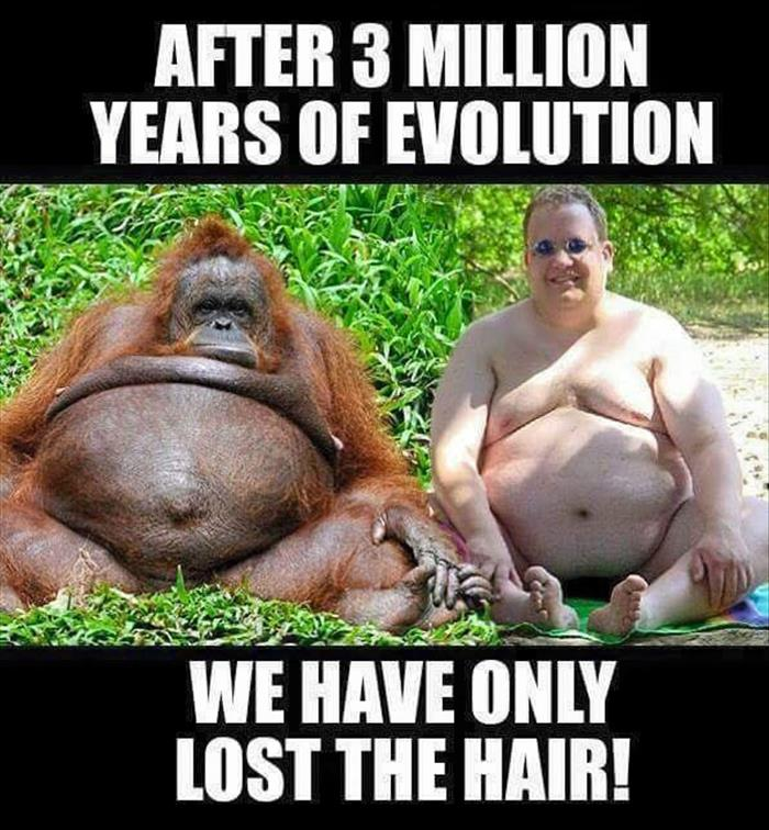 After 3 million years of evolution, we have only lost the hair.