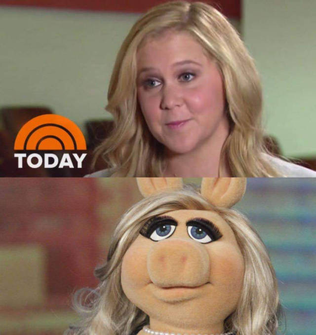 Amy Schumer looks much more like Miss Piggy than Barbie.