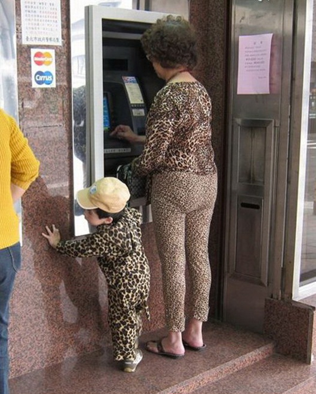 Urban leopard and her offspring spotted in the wild.