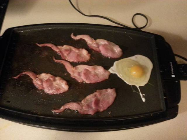 Bacon and eggs anyone?