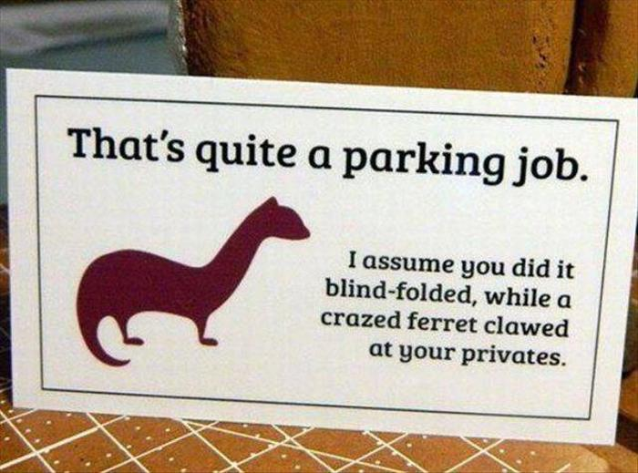 Bad parking and a ferret.