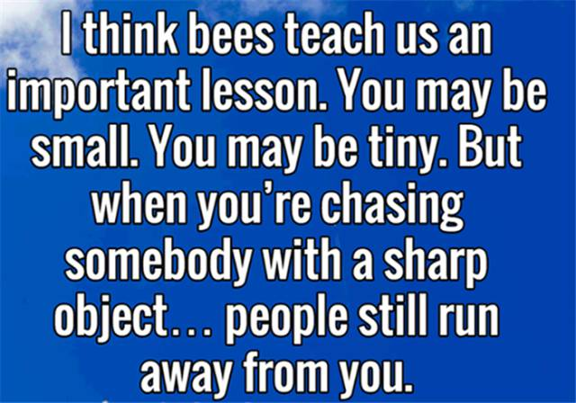 Bees teach us an important lesson.