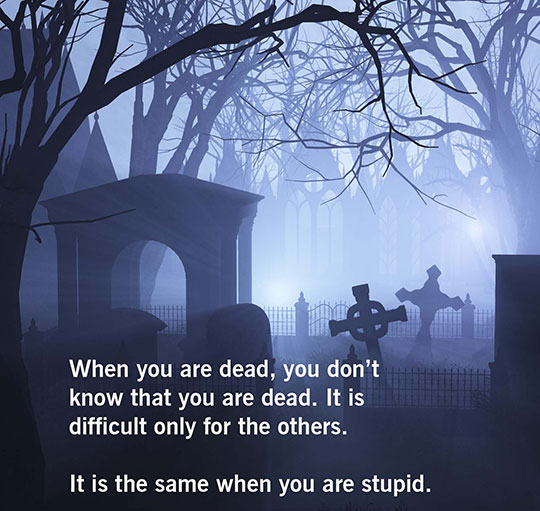 Funny Quotes About Being Dumb: Being Dead Is The Same As Being Stupid.