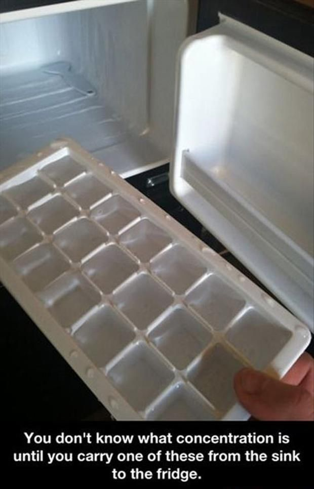 Carrying an ice tray full of water to the freezer is the ultimate test of concentration.