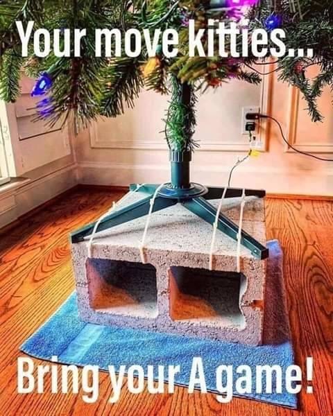 Cat proof Christmas tree.