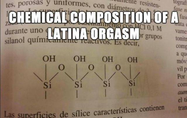 Chemical composition of a latina orgasm.