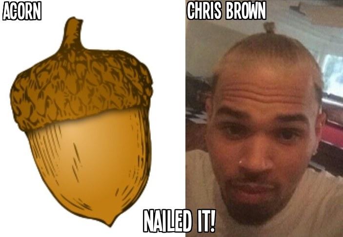 If Chris Brown was trying to look like an acorn, he nailed it.
