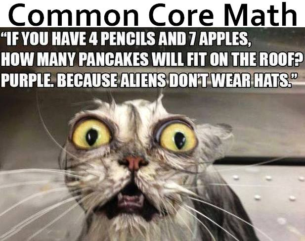 Common Core Math Takes 20 Steps To Find Out What 2+2 ...