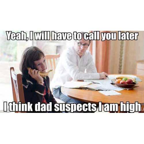 Yeah, I will have to call you later. Dad thinks I'm high. Hello?