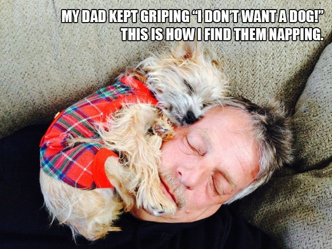 Dad does not want a dog!