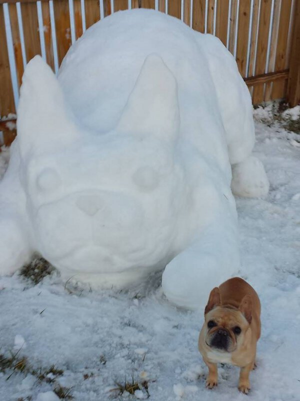 Doggy snow sculpture looks exactly like the real thing.