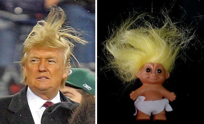 Donald Trump vs Troll Doll. Which one has better hair?