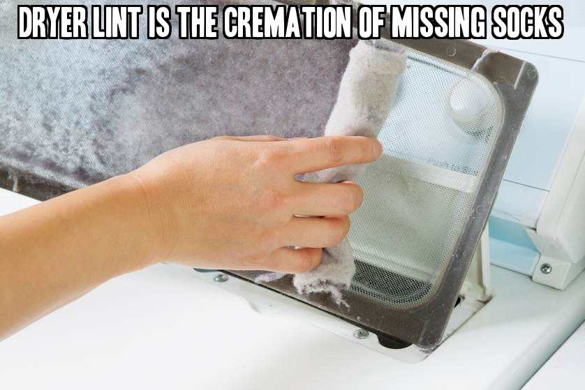 Dryer lint is the cremation of missing socks.