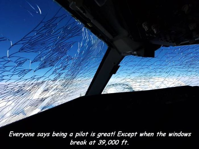 Everyone says being a pilot is great...