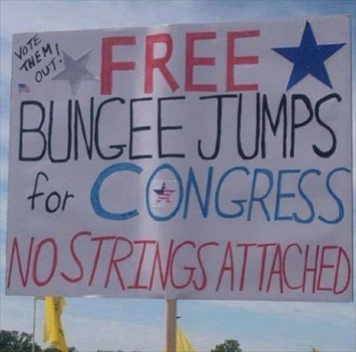 Free bungee jumps for congress.