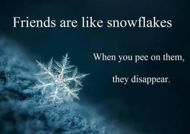 Friends are like snowflakes.