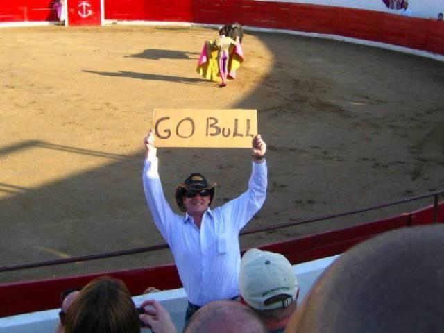 Go bull!