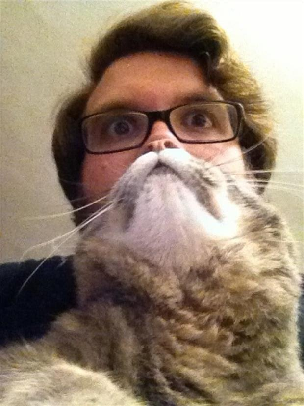Have You Ever Tried Doing A Cat Beard With Your Favorite Feline?