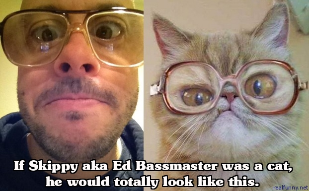 If Skippy aka Ed Bassmaster was a cat, he would totally look like this.