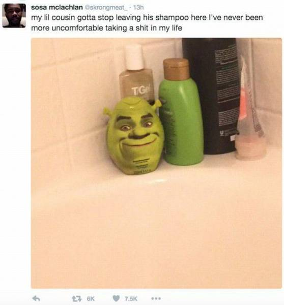 It's very uncomfortable to take a dump with Shrek watching.