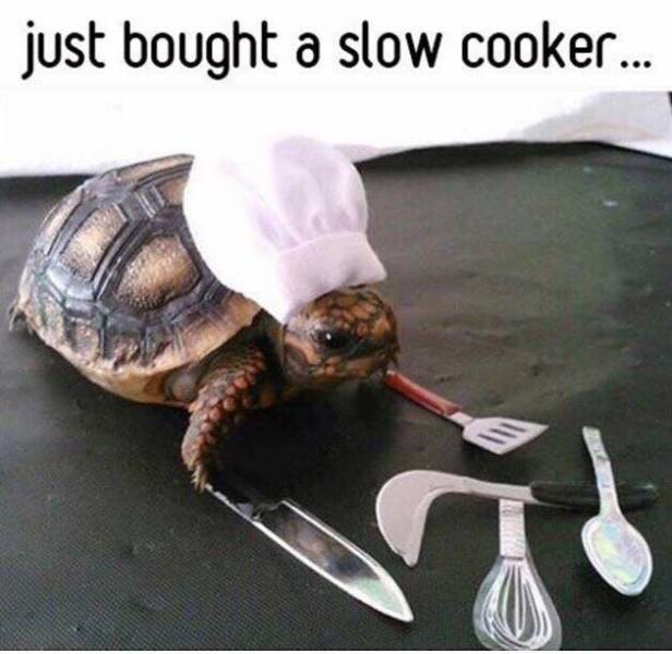 Just bought a slow cooker.