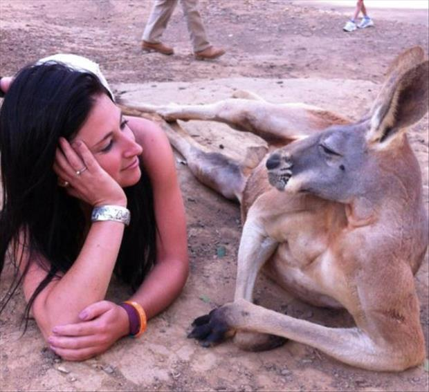 Kangaroo And A Pretty Woman. It's Not Weird At All.