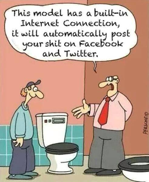 Keep your friends on Facebook and Twitter updated in real time on your turd status with this high tech toilet.