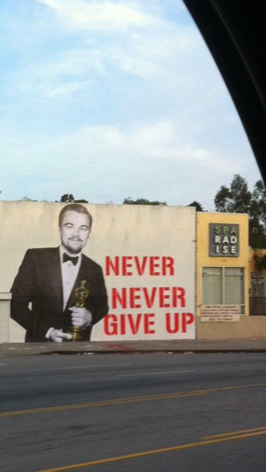 Leonardo DiCaprio reminds you to, never never give up.