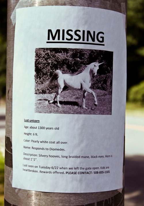 Missing Unicorn. Rewards Offered. Please Help.