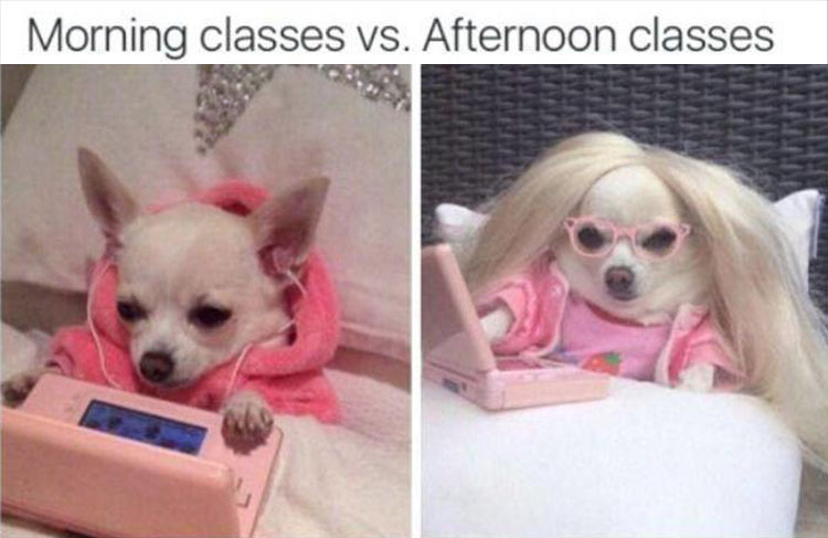 Morning classes vs. Afternoon classes