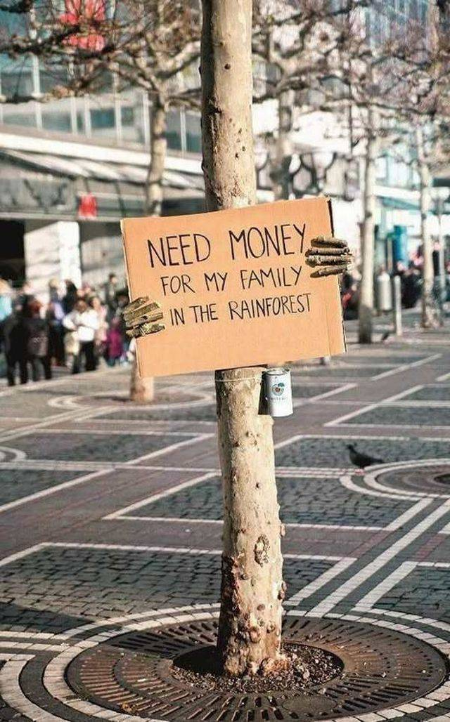 Need money for my family in the rainforest.