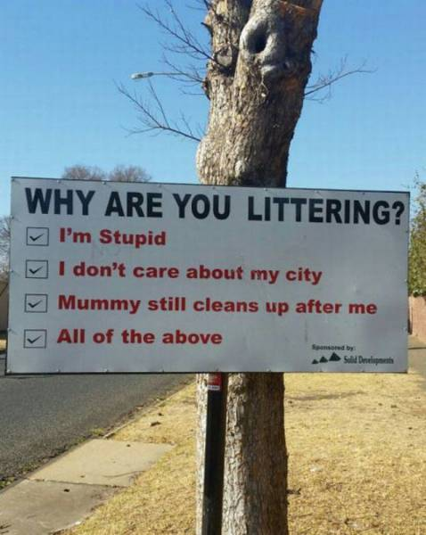 Why are you littering?