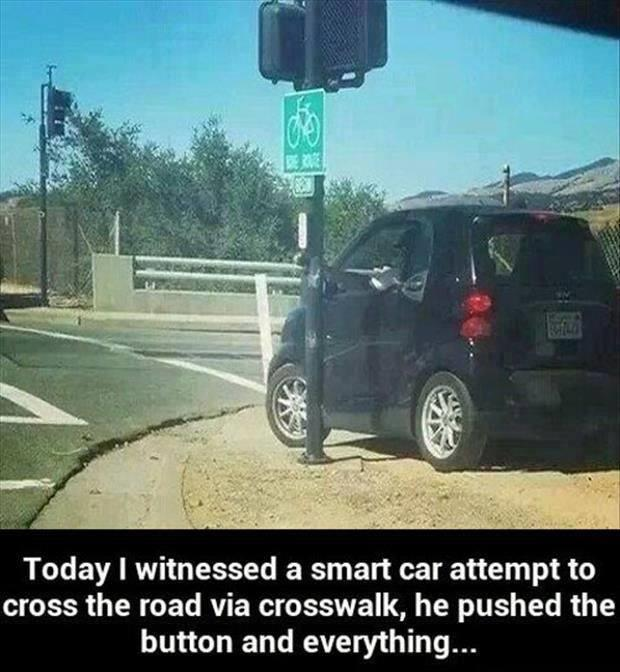 Nobody Said You Had To Be Smart To Drive A Smart Car.