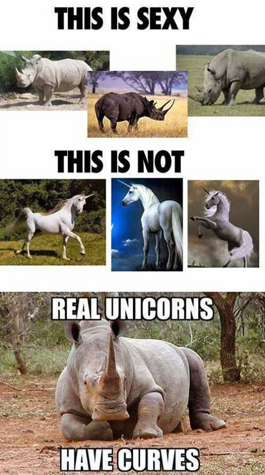 Real unicorns have curves.