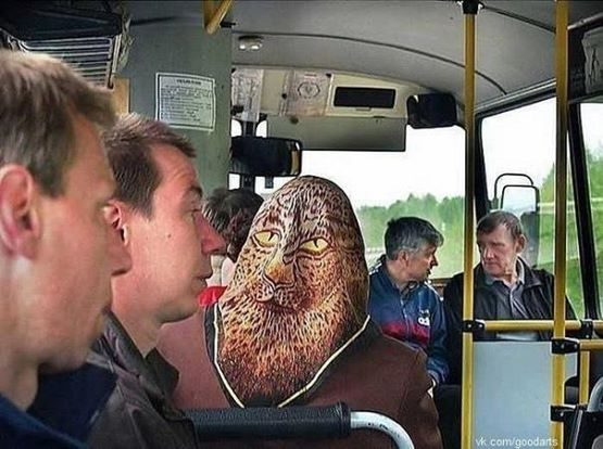 Riding the bus is always an adventure