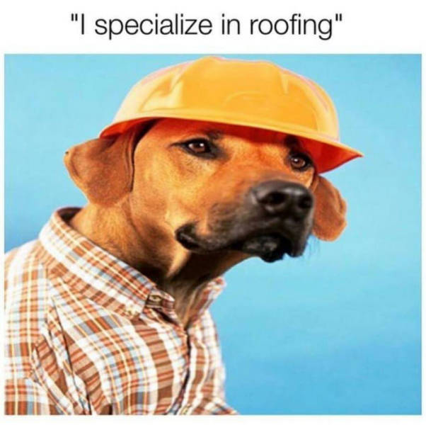 Roofing specialist.