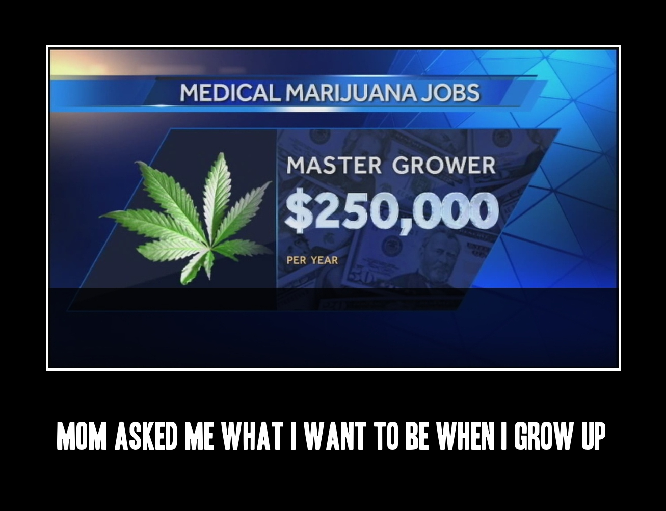 Screw being a policeman or a fireman. I want to be a master medical marijuana grower.