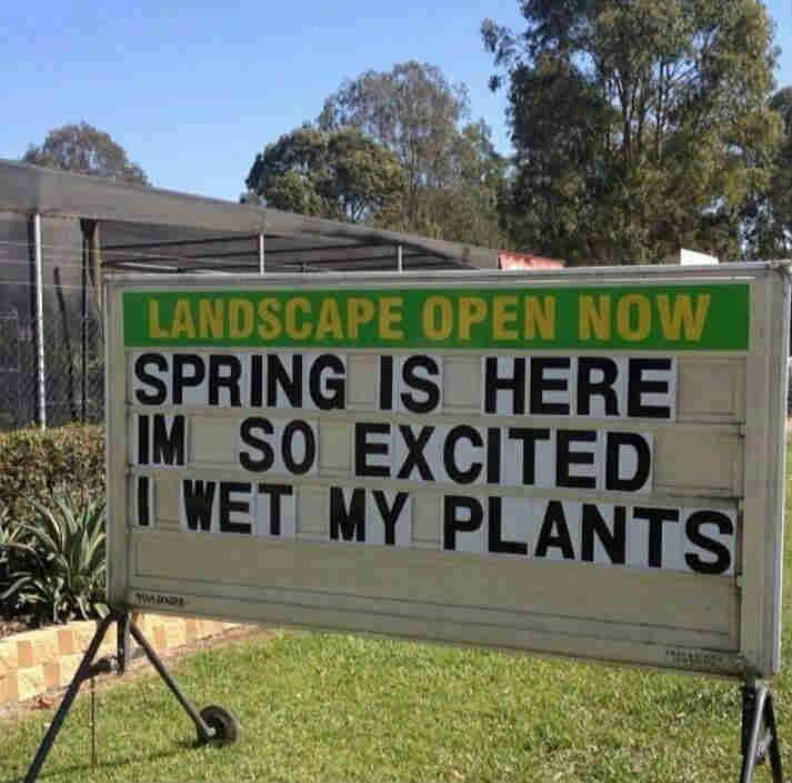 So exciting when Spring arrives! We can all wet our plants.