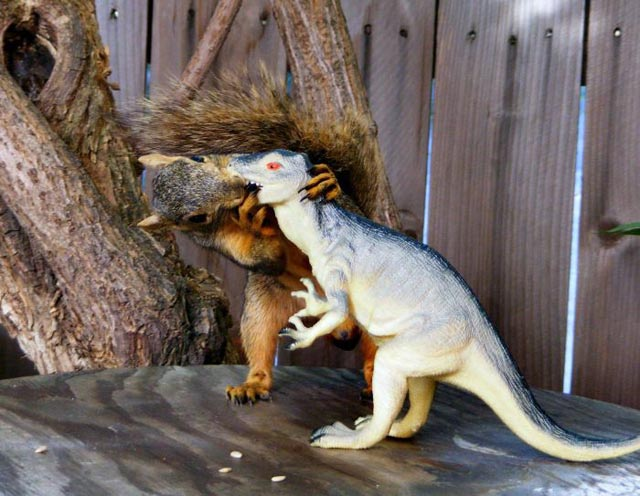 Squirrel making out with a plastic dinosaur