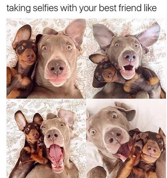 Taking selfies with your best friend.