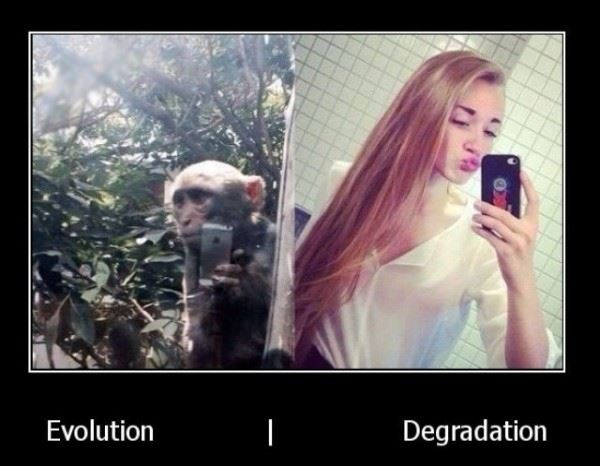The Difference Between Evolution and Degradation.