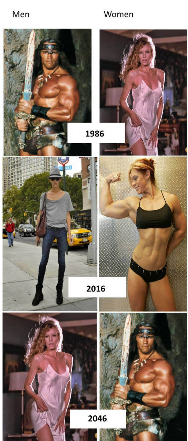 The evolution of men and women.