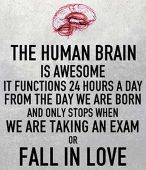 The human brain works great most of the time