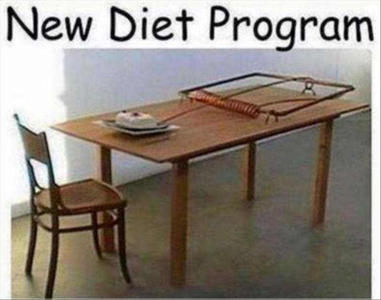 The new mouse trap diet is guaranteed to help you lose weight.