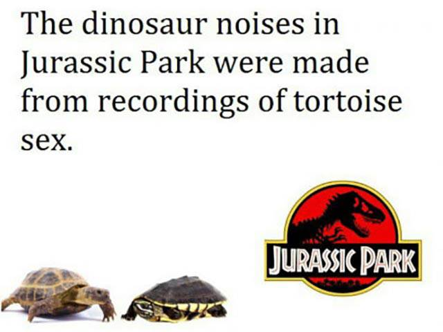 The truth about Jurassic Park.