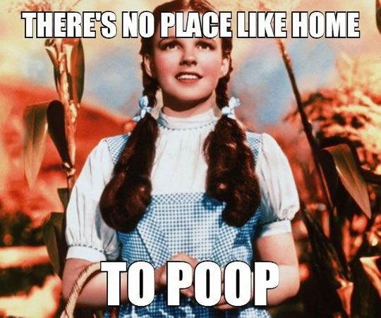 There's no place like home, especially when you need to poop.