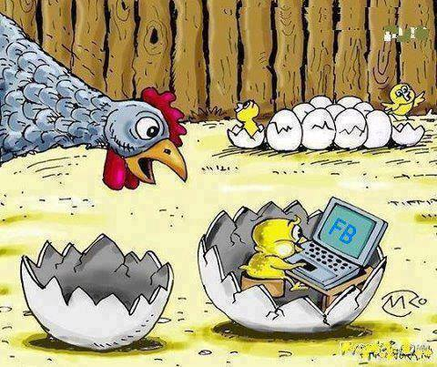 A chicken is hatched already logged on to Facebook describes today's society well.