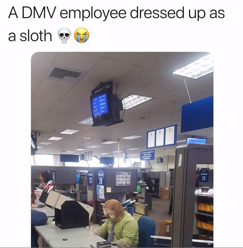 This DMV employee chose the perfect costume for Halloween.