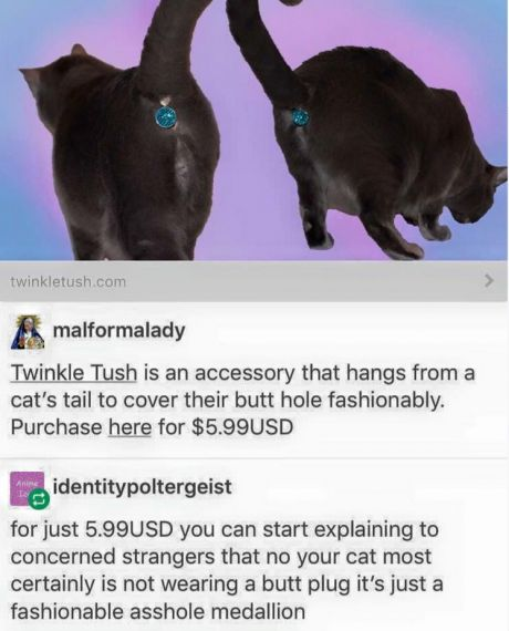 Twinkle Tush is a butthole cover for your cat.